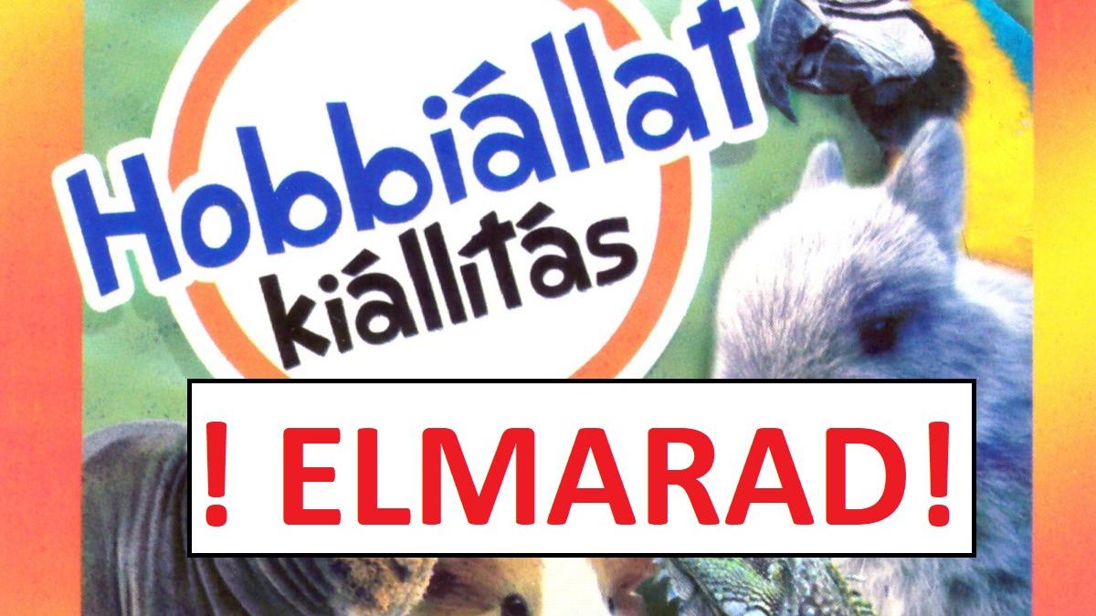 !ELMARAD! - Hobbiállat kiállítás - Szeged terem